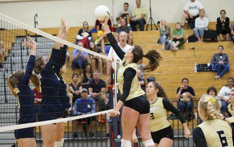 Varsity and junior varsity volleyball knock off Steinbrenner