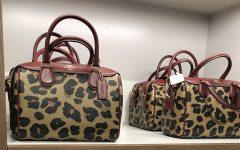 Animal print rises in popularity