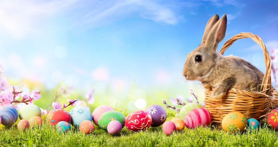 How well do you know the Easter holiday?