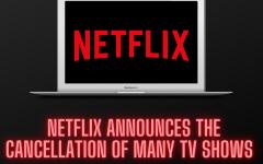 Netflix cancels many original series