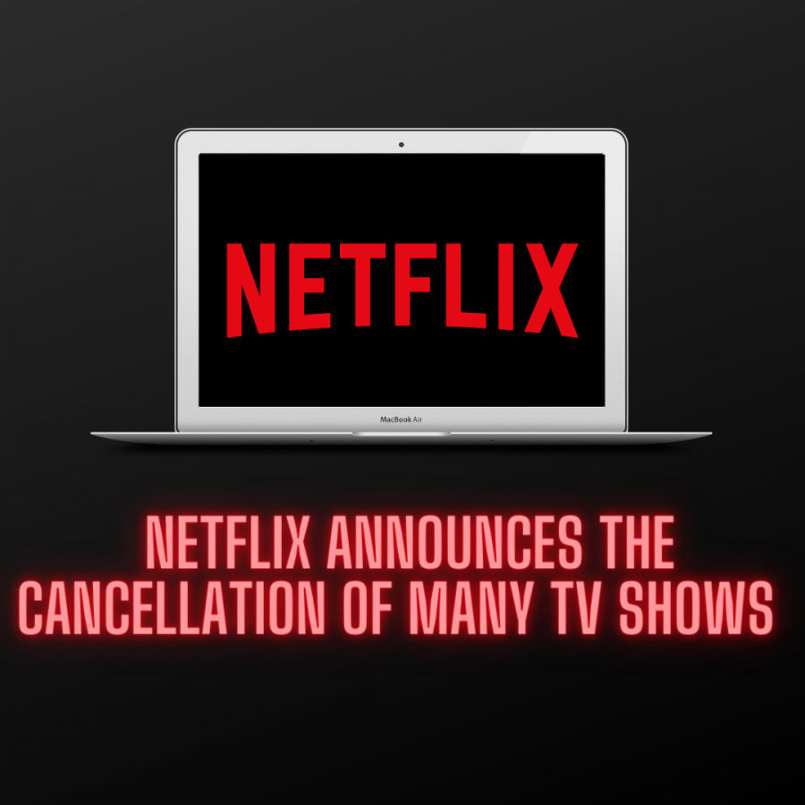 Netflix is known for pumping out hours of content and creating new originals quite frequently, so cuts to shows with lower ratings or less viewership happen annually.