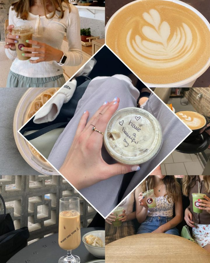 Working at a local coffee shop for over a year now, I got a good look and feel on what should good quality espresso taste like. However, being so curious and open to new choices, I wanted to compare the top five coffee shops and see which one serves the best modern classic - an iced caramel almond milk latte.