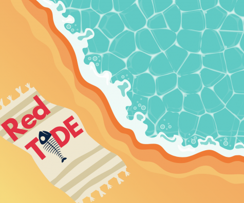 Red Tide is still affecting the St. Petersburg waters. Learn how to stay safe and take certain precautionary measures while still enjoying the beaches.