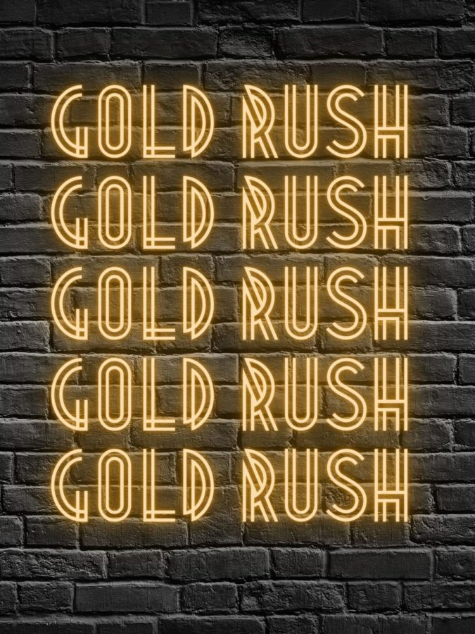 Scroll to learn more about Plant High School's student section, Gold Rush.
