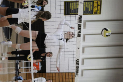 Jumping to set the ball, senior Mackenzie Nichols hits the ball over the net. Nichols started playing volleyball in 6th grade and is now on the varsity volleyball team.